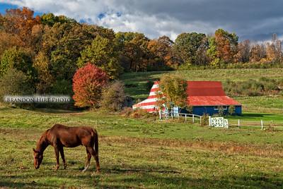 American Flag Horse Barn