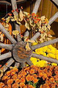Wagon Wheel Fall