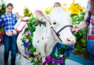 20180922 Rhinestone Cowboy celebrating the Equinox and Chicago's Farming-58