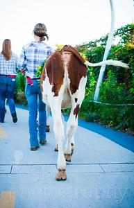 20180922 Rhinestone Cowboy celebrating the Equinox and Chicago's Farming-54