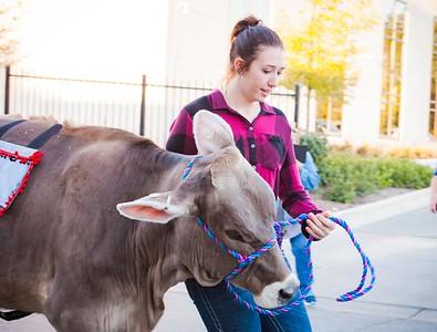 20180922 Rhinestone Cowboy celebrating the Equinox and Chicago's Farming-16