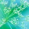 Aqua Botanical Abstract 1