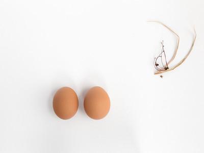 Eggs - Stills