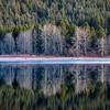 Quiet Lake Siskiyou Reflections