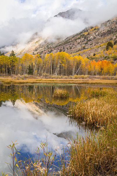 Lundy Canyon Beaver Pond Clearing Clouds