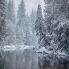 Merced River Winter Reflections