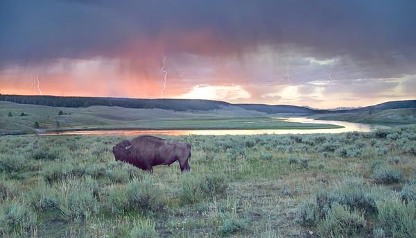 Yellowstone Power
