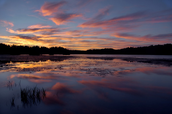 Majestic Reflection