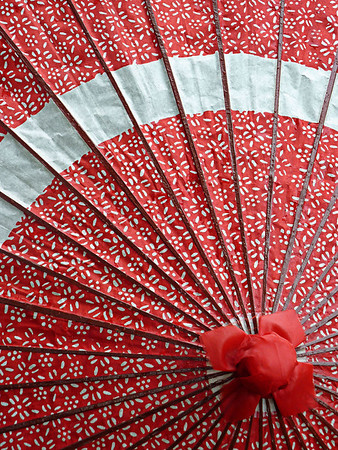 Red Takayama Umbrealla