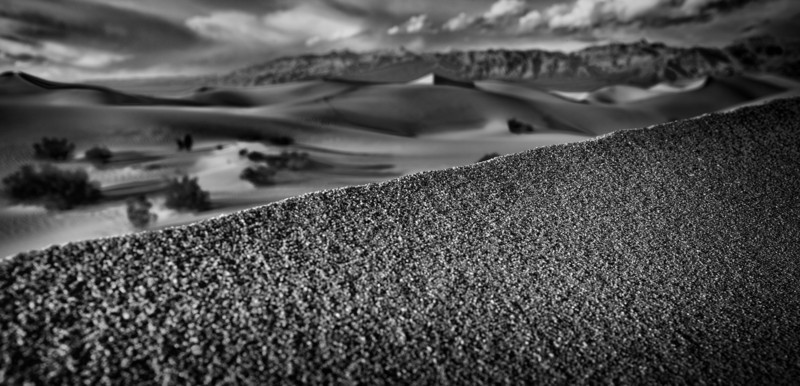 Texture and contrast in the sand, at Mesquite Dunes in Death Valley, N.P.