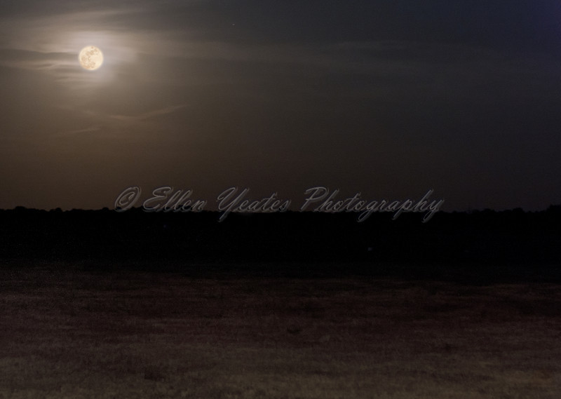 Moonrise<br /> <br /> Shot between Georgetown and Salado, Texas.