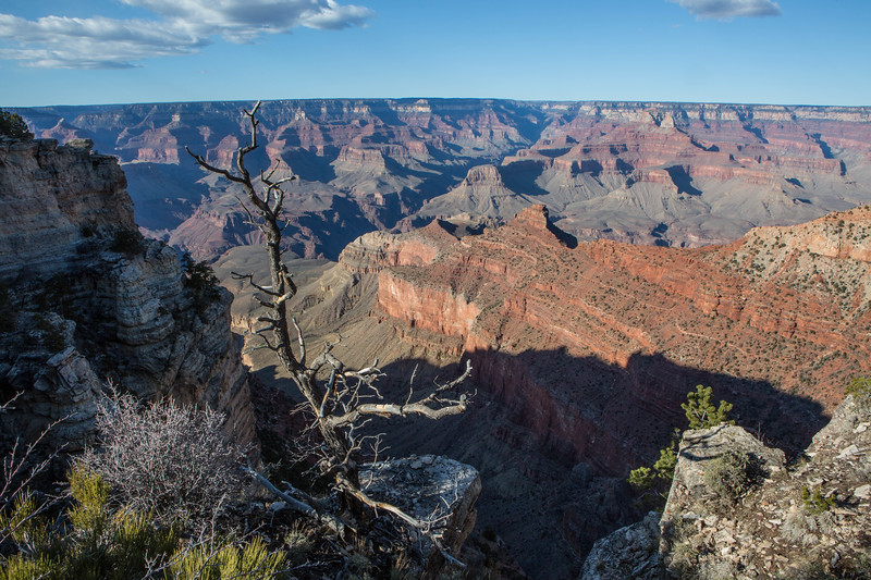 Grand Canyon South Rim Views
