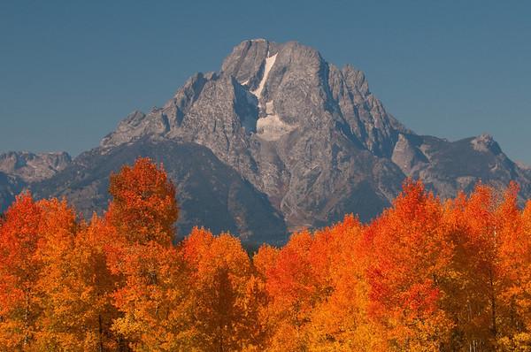 Mt Moran in Autumn