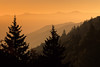 Golden light on Smokies