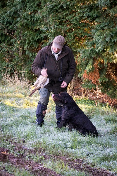 D4Dogs HPR Live Shoot Over Training Day-35