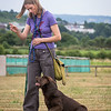 Gundog Club Level 1 & 2 Asessment Helen Phillips-18