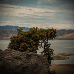 San Luis Reservoir-CA 3