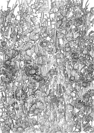 Foliage / ink on paper (unframed) / 84.1cm x 59.4cm / original £490 / image 0470