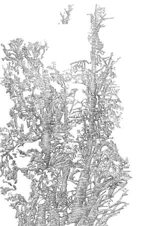 Keswick Avenue / ink on paper (unframed) / 84.1cm x 59.4cm / original £400 / image 0466