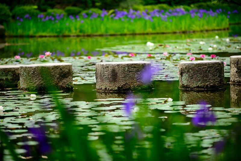 Heian Jingu's park in Kyoto