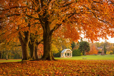 Brinton Park, Kidderminster.