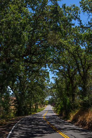California Country Road