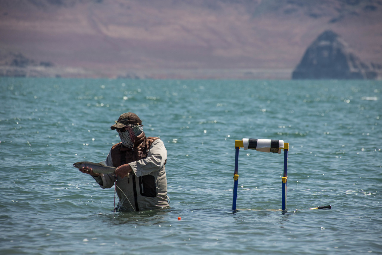 Pyramid Lake Fishing