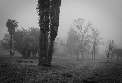 Woodland Hills-CA-04