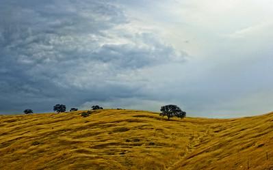 Upper Cottonwood Creek-CA