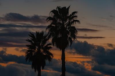 Woodland Hills-CA