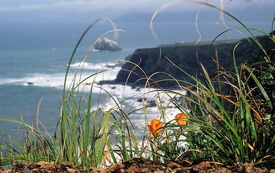 Big Sur-CA