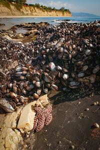Zuma Beach-CA- 07