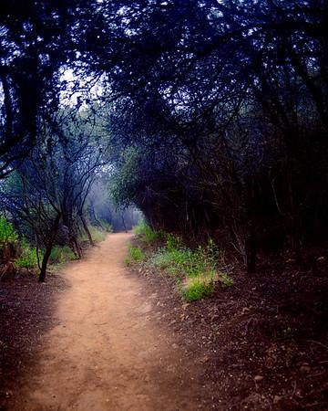 Temescal Park-CA-05