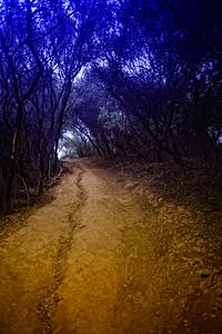 Temescal Park-CA-04