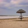 Lonely Hula
