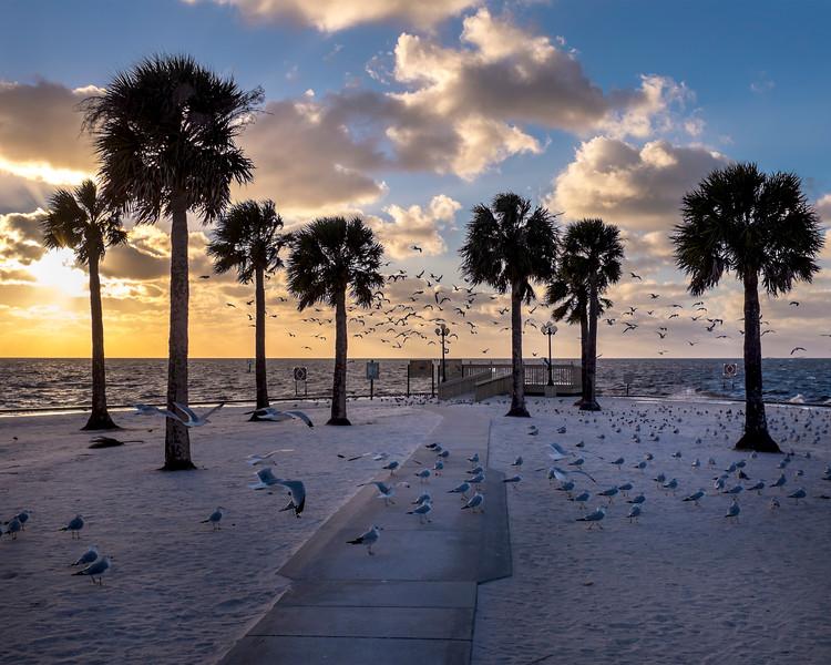 Pine Island Beach Park, Weeki Wachee, Florida