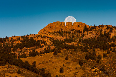 Revealing the tooth in Horsetooth
