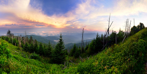 Clingman's Dome, Smoky Mountain National Park, Tennessee