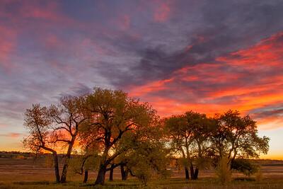 Colorado Front Range Fall Color Sunrise