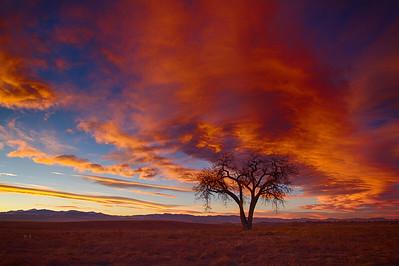 Colorado Front Range Sunset