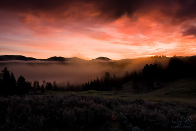 Foggy Yellowstone Sunrise