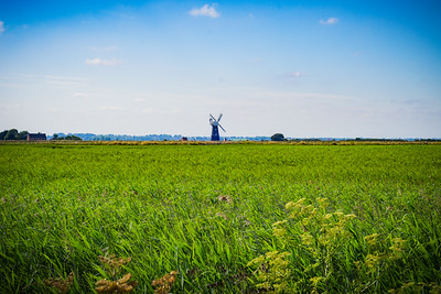 Green Grass Field with Windmill on Horizon