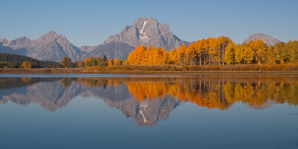 Mt Moran Autumn Reflection