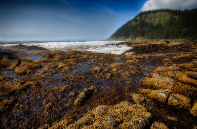 Coastal Oregon
