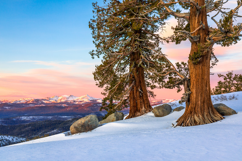 Carson Pass Winter Sunset