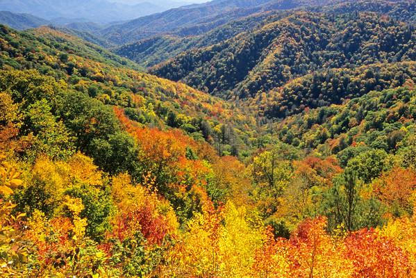 Deep Creek Valley