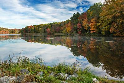 Witnessing Autumn