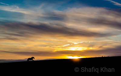 Sunrise Nr Whalley Old Rd, Lango