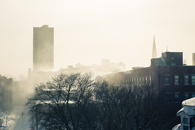 Winter storm 2015, Cambridge MA.