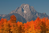 Mt Moran in Autumn